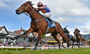 Horse Racing from Chester