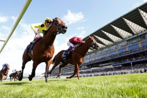 Photo of a horse racing, two horse race