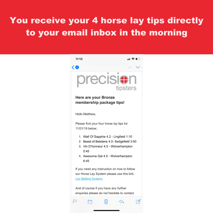 Step 1 of the horse lay betting system
