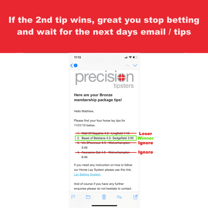 Step 5 of the horse lay betting system