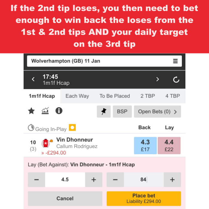 Step 6 of the horse lay betting system