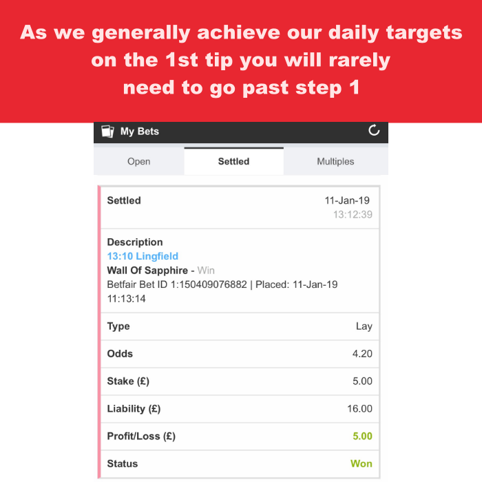 Daily target worn for the horse lay betting system