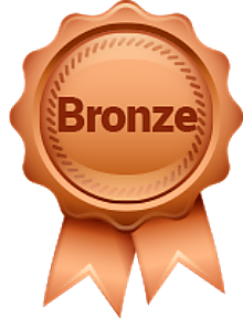 bronze membership package icon